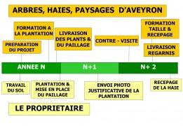 schéma présentant l'accompagnement à la plantation pour les petits projets de plantation de haie